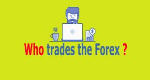 Who trades the forex market