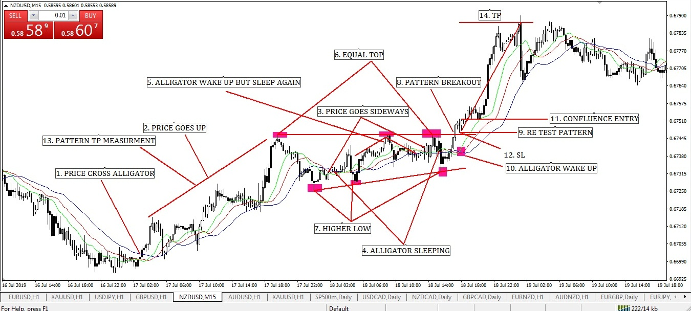 Triangle Pattern with Alligator Indicator Confluence Strategy (Part-2)
